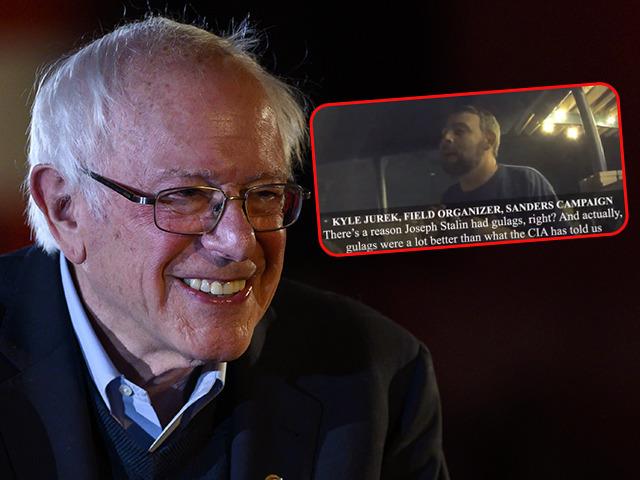 46945-Bernie.jpg