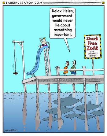 3804 shark zone2.jpg