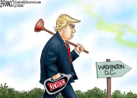 Drain the Swamp.jpeg