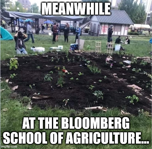 bloomberg-agriculture44x48q.jpg