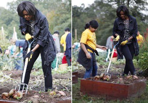 Michelle digs.jpg