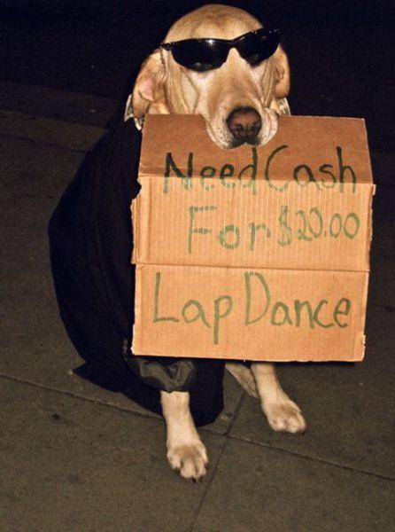 2000_lap_dance.jpg