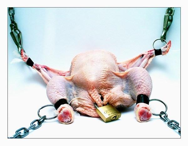 bondage chick.jpg