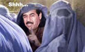 Saddam escape.jpg