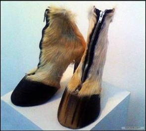 hillary_hoof_shoes02.jpg