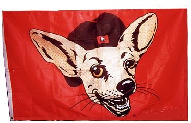 Taco Bell Dog.jpg