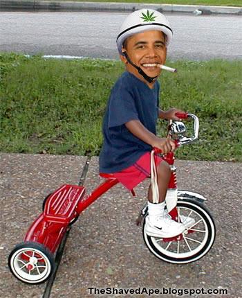 obama-weed.jpg