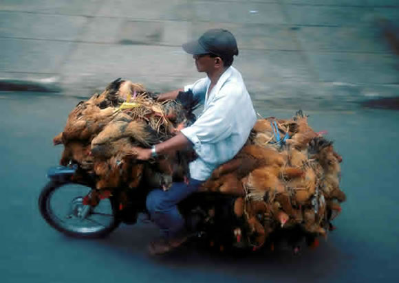 Saigon-Chicken-Man.jpg