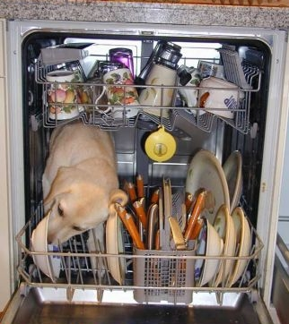 dishwasher4lu.jpg