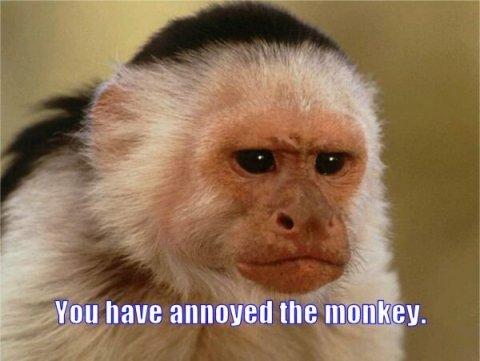 you-have-annoyed-monkey.jpg
