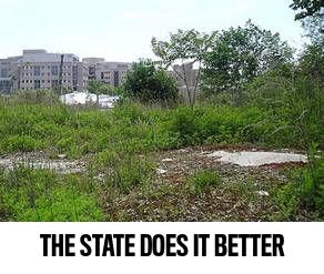state property.jpg