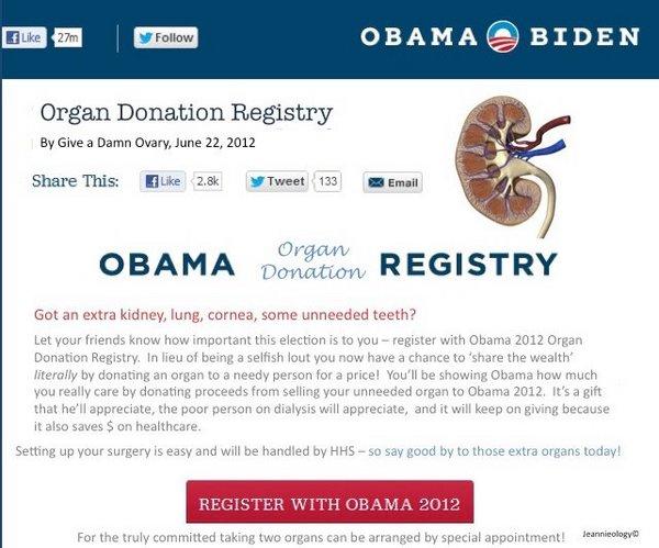 Obama Registry.jpg