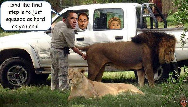obama-lion-balls1.jpg