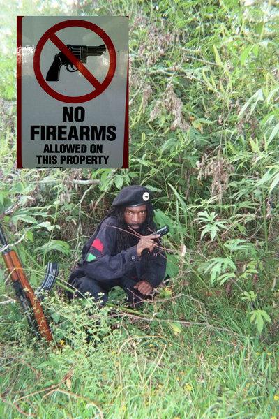 bp gun.jpg