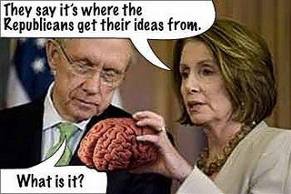 jeff-brain.jpg