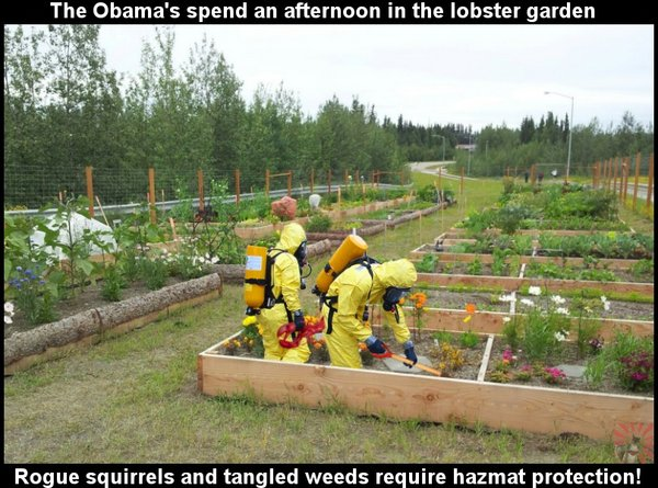 Obama Lobster Garden.jpg