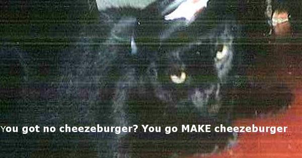 cheezeburgerbrando.jpg