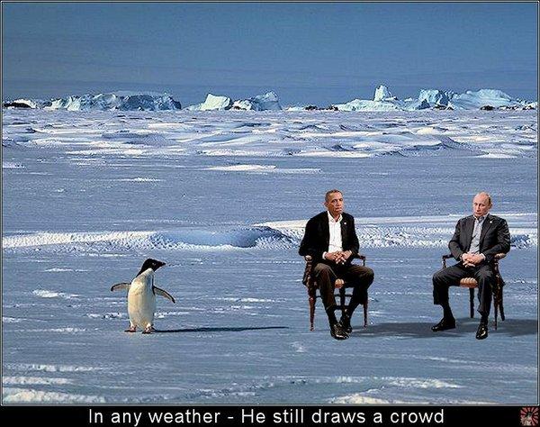 Obama-and-Penguin.jpg