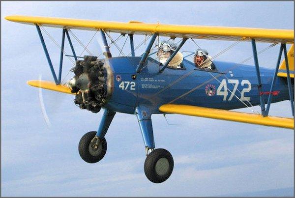 craptek putout airplane-2jpg.jpg