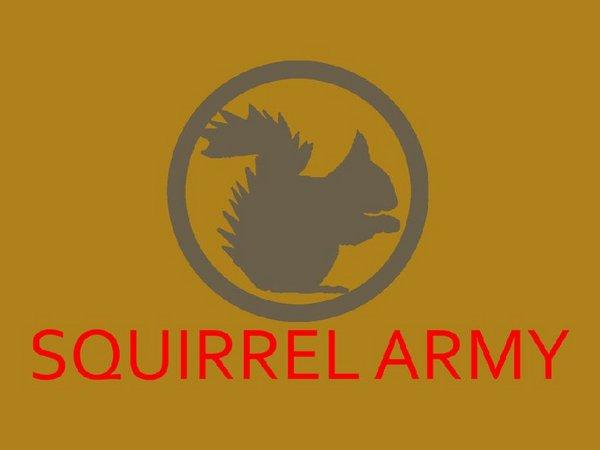 squirrel_army_by_astro_kid_248-d4l0ddg.jpg