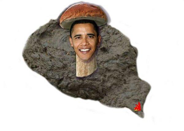 obama mushroom.jpg
