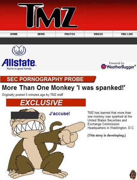 tmz-monkey1.jpg