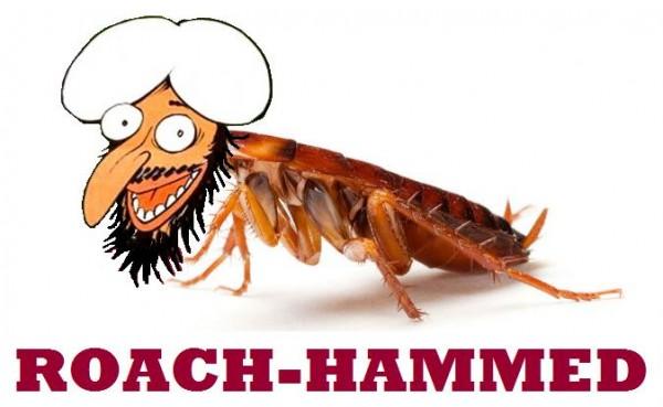 ROACH-HAMMED.jpg
