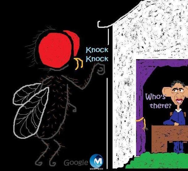 o Fly at the door.jpg