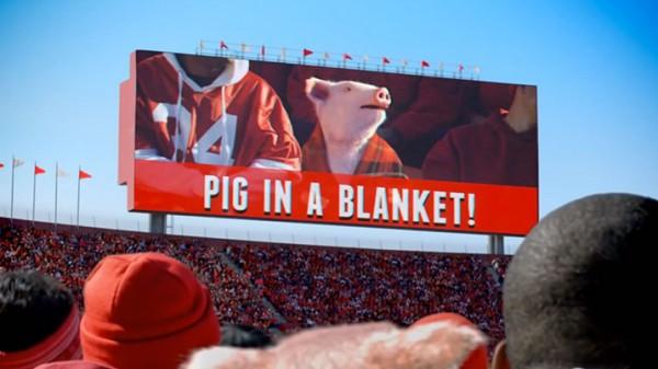geico-pig-in-a-blanket.jpg