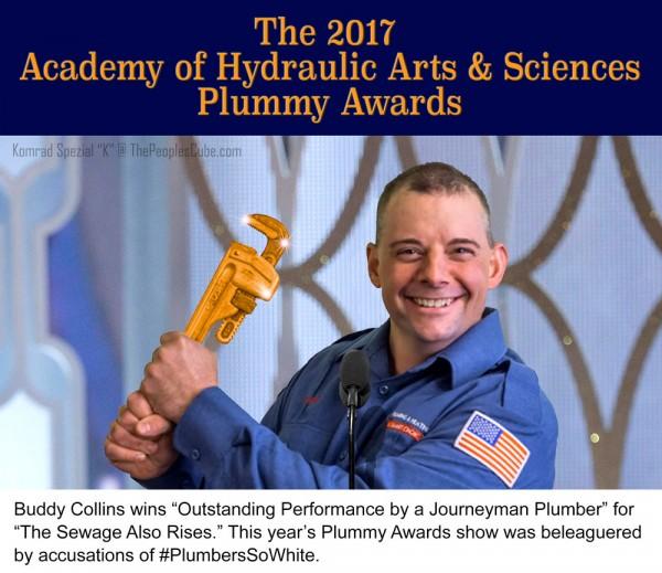 2017-Plummy-Awards.jpg
