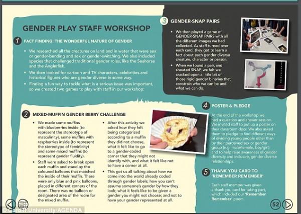 Transgender Muffin Challenge2.jpg