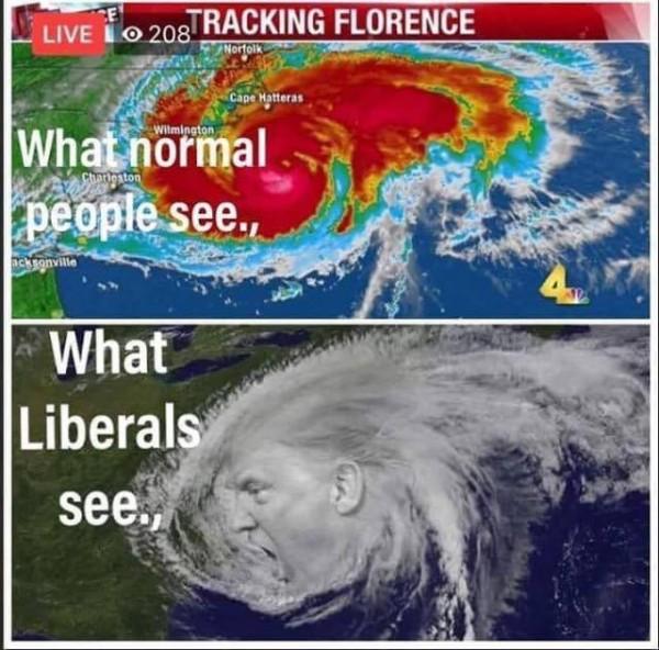 trump hurricane.jpg