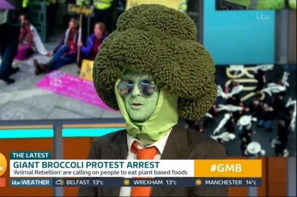 Broccoli Man.jpg