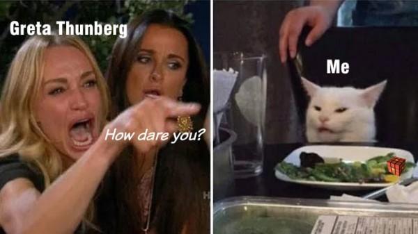 Greta_Cat_Meme.jpg