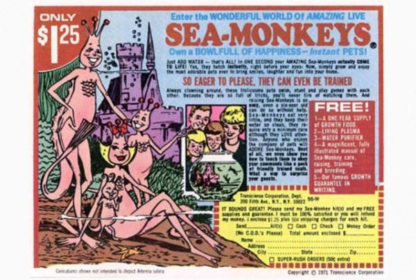 SeaMonkeyAd.jpg