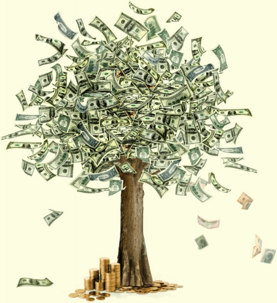 money tree.jpg