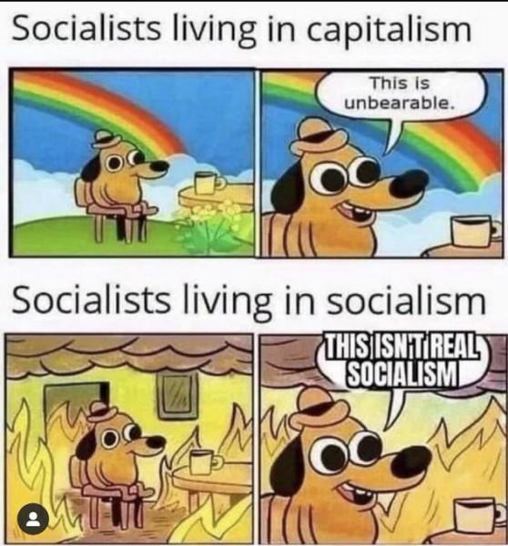 socialists-in-capitalism-v-socialists-in-socialism.jpg