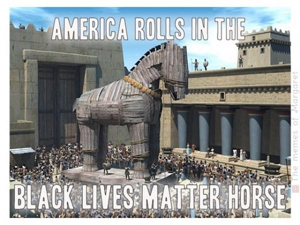 blm trojan horse.jpg