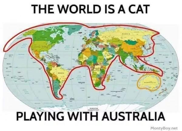 Cat_Earth_Theory.jpg