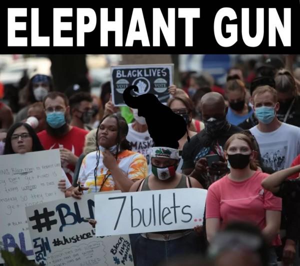ELEPHANT GUN.jpg