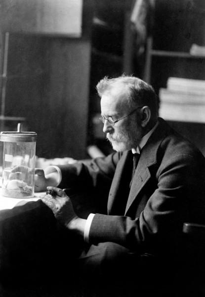Doctor Paul Ehrlich.jpg
