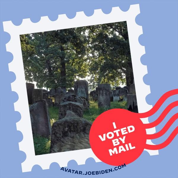 I voted for Joe - pic.jpeg