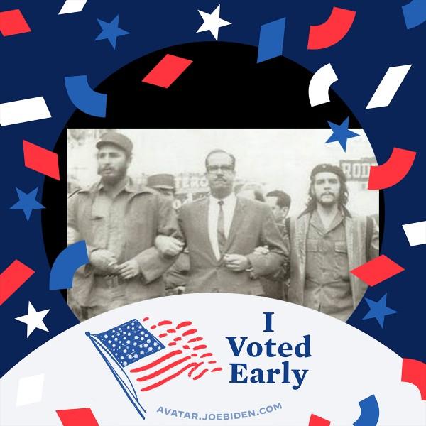 I voted for Joe - pic3.jpeg