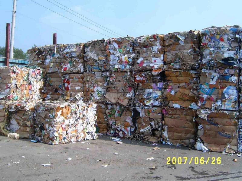 waste-paper1.jpg